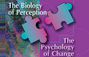 biology-perception